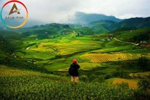 Khám phá du lịch Sapa tháng 8 có gì hấp dẫn du khách?